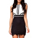 Color Block Round Neck Sleeveless Zip Back Dress with Lace