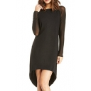 Black Long Sheer Sleeve High-Low Hem Dress