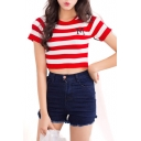 Slim Stripe Short Sleeve M Embroidered Crop Knitting Top