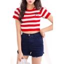 Slim Stripe Short Sleeve M Embroidered Crop Knitting Top
