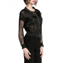 Black Mesh Insert Stand Collar Long Sleeve Sheer Jacket