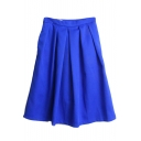 Plain Zip Side Pleated Flared Midi Skirt