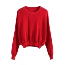 Knit Plain Round Neck Long Sleeve Sweater