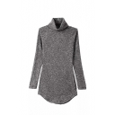 Gray Long Sleeve Turtle Neck Knit Sweater