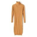 Turtleneck Long Sleeve Plain Long Sweater