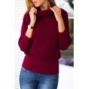 Turtleneck Plain Long Sleeve Elastic Waist Sweater