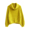 Turtleneck Hollow Out Plain Long Sleeve Sweater