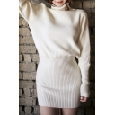 Turtleneck Long Sleeve Plain Bodycon Knit Mini Dress