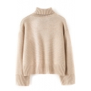 Plain Turtleneck Batwing Sleeve Long Sleeve Sweater
