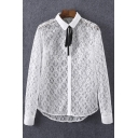 Lapel Tie Neck Long Sleeve Plain Sheer Lace Shirt