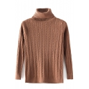 Turtleneck Long Sleeve Cable Knit Plain Sweater