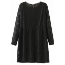 Plain Round Neck Long Sleeve Lace Zip Back Smock Mini Dress