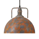 Vigorous Orange Finish 1 Light LED Pendant in Industrial Style