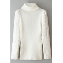 Turtleneck Patchwork Plain Padded Sleeve Sweater