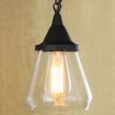 Matte Black 1 Light Clear Glass LED Mini Pendant Light
