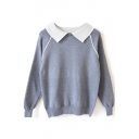 Contrast Collar Raglan Long Sleeve Pullover Sweater