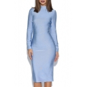 High Neck Long Sleeve Plain Bodycon Midi Slim Dress