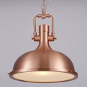 Copper/Nickel 1 Light Industrial Dome Shaped Indoor LED Pendant