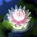 5'' Wide Lotus Color-changing LED Solar Powered Decorative Floating Light