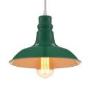 Elegant Green Lighting Single Light Barn LED Pendant Light