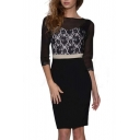 Sheer Boat Neck Half Sleeve Lace Slim Fit Sexy Dress