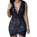 Women's Solid Sleeveless Club Lace Vintage Dress