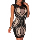 Women's Lace Nude Illusion See Through Sleeves Bodycon Dress