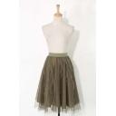 Mesh Elastic Waist Asymmetric Hem A-Line Skirt