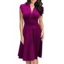 Cap Sleeve V-Neck Pleated Chest Zip Side Elegant A-Line Pleated Midi Dress