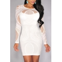 Women's Sleeveless / Long Sleeve Lace Party Bodycon Dress