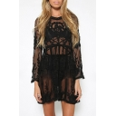 Women's Sexy Long Sleeve Round Neck Lace Hollow Out Sheer Mini Dress