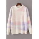 Women's Basic Color Block Round Neck Long Sleeve Casual Sweater
