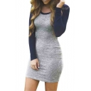 Women Long Sleeve Round Neck Color Block Knitted Bodycon Mini Dress
