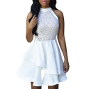 Womens Floral Lace Chiffon Mesh Skater Pleated Party Casual Dress