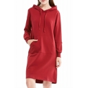 Women's Fashion Plain Long Sleeve Casual Loose Shift Hoodie Dress