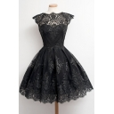 Women's Elegant Chic Lace Patched Round Neck Cap Sleeve Flare A-Line Midi Dress