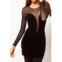 Women's Sexy Velvet Patched Sheer Mesh Round Neck Long Sleeve Pencil Mini Dress