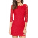 Chic Elegant Lace Crochet Half Sleeve Plain Mini Bodycon Party Dress
