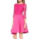 Elegant Lace Patchwork 3/4 Length Sleeve Plain Mini A-Line Dress