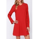 Sexy Mesh Patchwork Long Sleeve Round Neck Plain Mini A-Line Dress