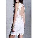Sexy Open Zip-Back Cutout Lace Plain Mini Bodycon Party Dress