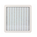 2000W LED Grow Light Full Specturm 200 LEDs 30000LM - White