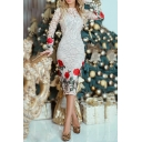 Women's Elegant Lace Floral Embroidery Pattern Long Sleeve Midi Pencil Dress