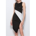 Color Block Sleeveless Zip Back Round Neck Asymmetric Dress