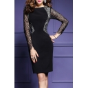 Elegant OL Style Lace Long Sleeve Slim Midi Pencil Dress