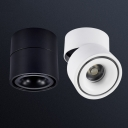 Transverse Tube Ceiling Mount Light,  White/Black 10W 4''
