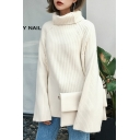 Winter's Warm Turtle Neck Long Sleeve Basic Plain Pullover Sweater