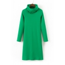 Turtle Neck Long Sleeve Basic Simple Plain Midi Shift Knit Dress