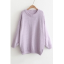 Basic Simple Plain Long Sleeve Round Neck Loose Leisure Sweater