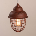 Industrial Vintage Hanging Pendant Light for Indoor/Outdoor Lighting with Wire Net Metal Cage
